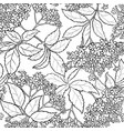 elderflower seamless pattern vector image vector image