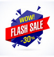 flash sale poster banner vector image vector image