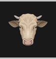head of cow face of of farm animal hand drawn vector image