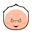 isolated grandmother avatar vector image