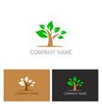 plant tree logo vector image vector image