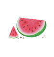 slice watermelon on white background summer vector image