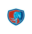 Elephant Head Side Shield Cartoon vector image vector image