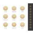 golden round flower logo set vector image