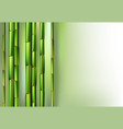 green bamboo trunks background realistic vector image