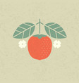 persimmon with leaves and flowers vector image vector image