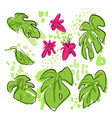 tropical hand draw collection with monstera vector image