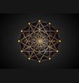 flower life symbol golden sacred geometry logo vector image vector image