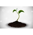 green sprout grows out vector image vector image