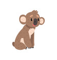 koala bear sitting on the ground cute australian vector image vector image