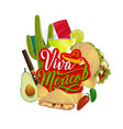 mexican holiday tequila cactus and chilli pepper vector image vector image