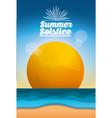 summer solstice season vector image vector image