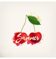 Watercolor card with cherry vector image vector image