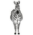 zebra black and zero vector image vector image