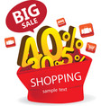 Big Sale Shopping vector image vector image