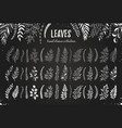 leaves hand drawn vector image vector image