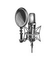 podcast retro microphone vector image