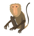 sitting monkey icon cartoon style vector image vector image