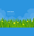 spring grass and flowers vector image vector image