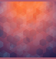 abstract of colorful sunset background with vector image vector image