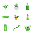 aloe medicine icon set flat style vector image