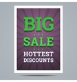 Big sale poster with stars shape and background vector image