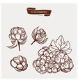 CLOUDBERRY drawing set vector image vector image