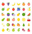 cute fruit flat icon set such as orange kiwi vector image vector image