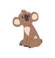 cute koala bear sitting australian marsupial vector image vector image