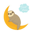 dreaming funny sloth sleeping on moon vector image
