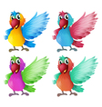 Four adorable parrots vector image vector image