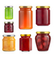 fruit jam jar glass isolated on white background vector image vector image