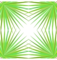 Symmetrical pattern with palm leaves on white vector image