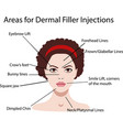 areas for rejuvenation cosmetological injections vector image