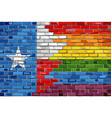 brick wall texas and gay flags vector image