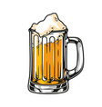 cup fresh lager beer concept vector image