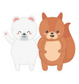 cute polar bear and squirrel animals vector image