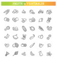 fresh fruit and vegetables thin line flat design vector image vector image