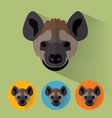 hyena portrait with flat design vector image