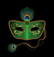 mask with peacock feather vector image vector image