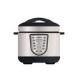multi cooker isolated icon vector image