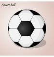 Soccer ball isolated on a pink background Simple vector image vector image