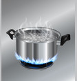 stainless steel pot on the gas stove vector image vector image