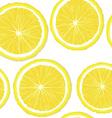 Lemon slices vector image