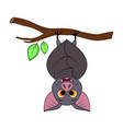 cute cartoon halloween bat hanging on tree vector image