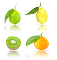 fruits lime lemon clementine kiwi polygonal vector image vector image
