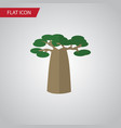 isolated decoration tree flat icon baobab vector image