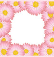 pink aster daisy flower border vector image vector image