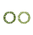 two olives wreath isolated white background vector image vector image