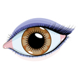 beautiful eye vector image vector image